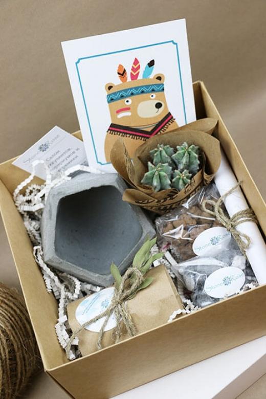 Подарочный набор Creative Succulens BOX №2