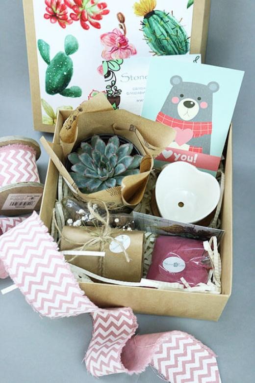 Подарочный набор Creative Succulens BOX №1