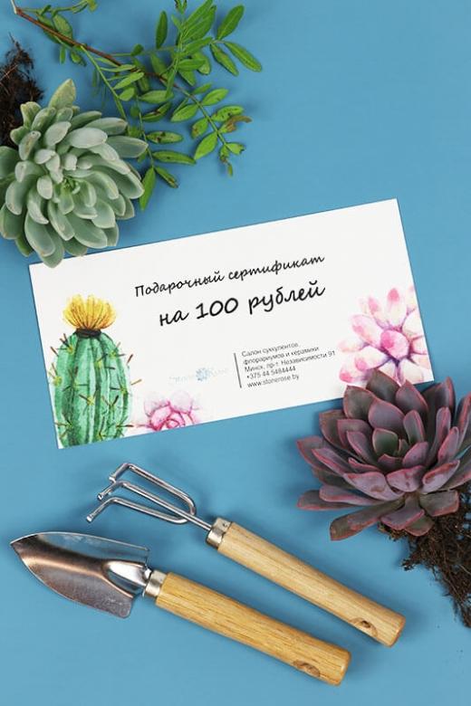 Подарочный сертификат на сумму 100р
