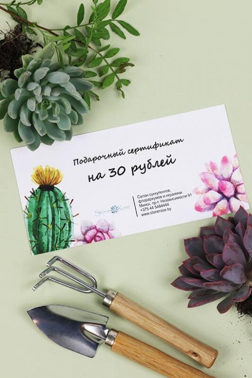 Подарочный сертификат на сумму 30р