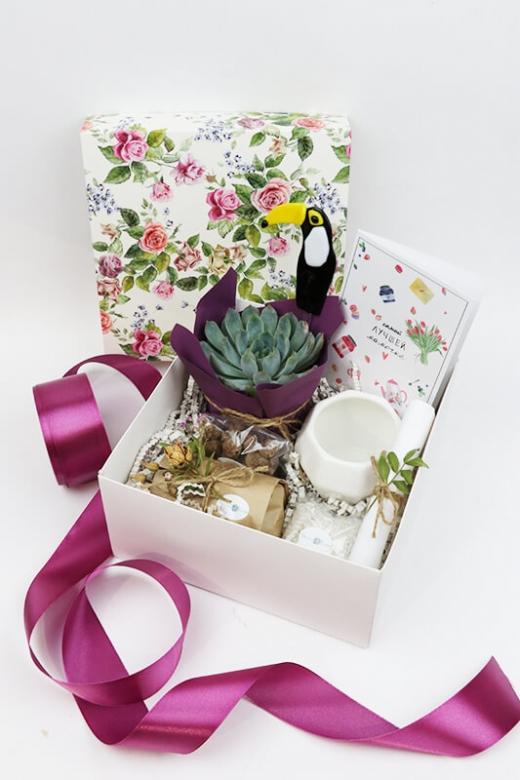 Подарочный набор Creative Succulens BOX №10