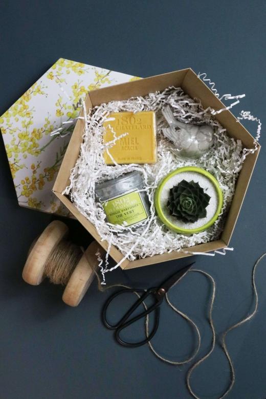 Подарочный набор Creative Succulens BOX №20