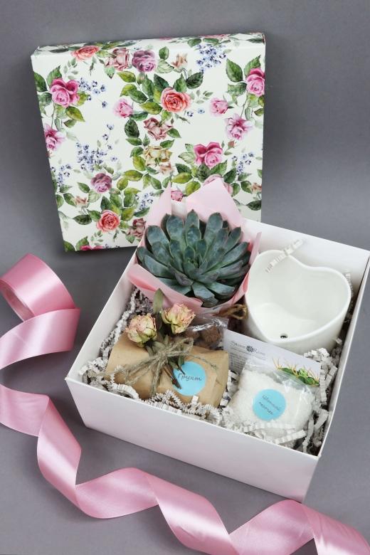 Подарочный набор Creative Succulens BOX №11