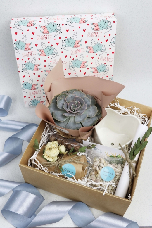 Подарочный набор Creative Succulens BOX №12