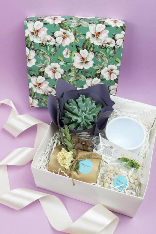 Подарочный набор Creative Succulens BOX №15