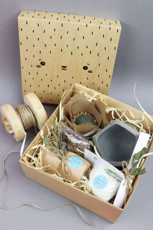 Подарочный набор Creative Succulens BOX №17