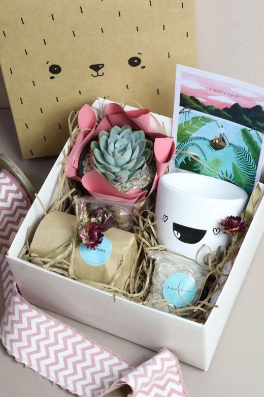 Подарочный набор Creative Succulens BOX №128