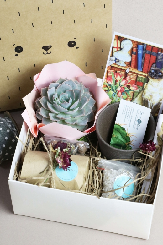Подарочный набор Creative Succulens BOX №131