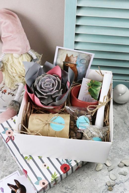 Подарочный набор Creative Succulens BOX №126