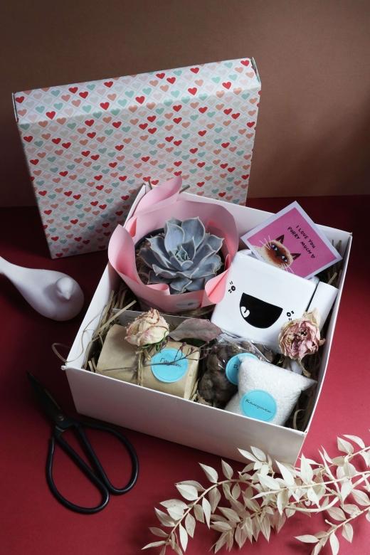 Подарочный набор Creative Succulens BOX №148