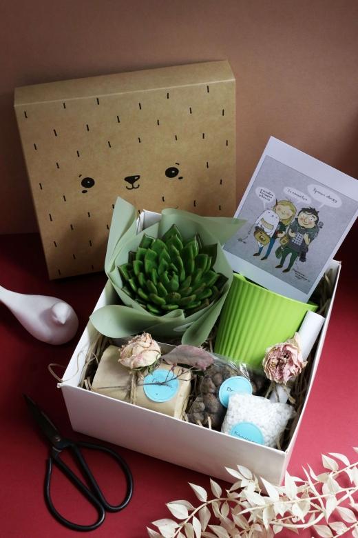 Подарочный набор Creative Succulens BOX №152