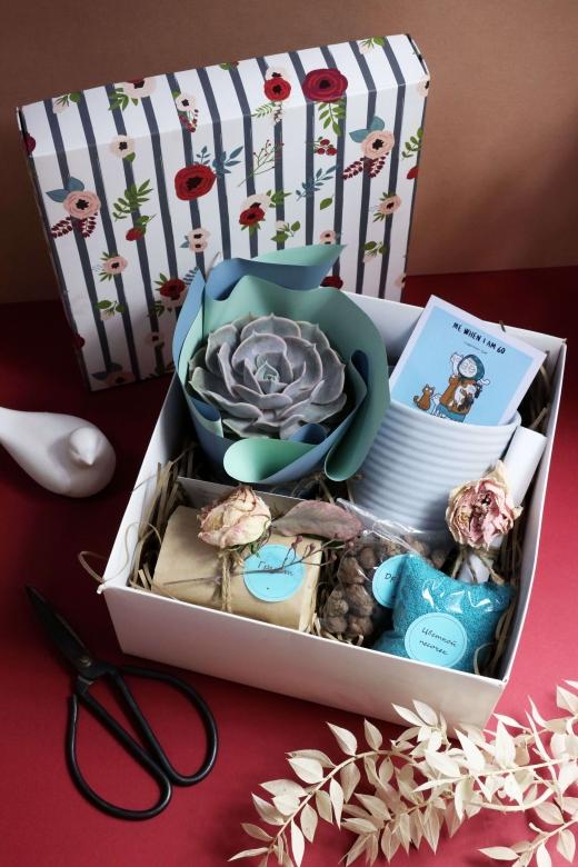 Подарочный набор Creative Succulens BOX №153