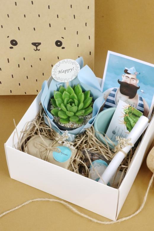 Подарочный набор Creative Succulens BOX №170