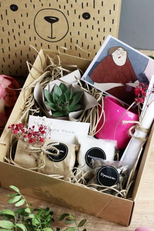 Подарочный набор Creative Succulens BOX №57