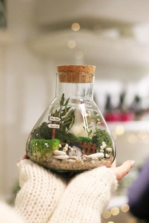 Мохнариум в бутылке С028