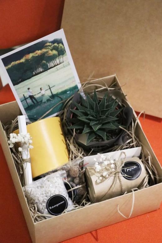 Подарочный набор Creative Succulens BOX №67