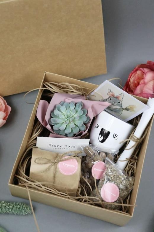 Подарочный набор Creative Succulens BOX №29