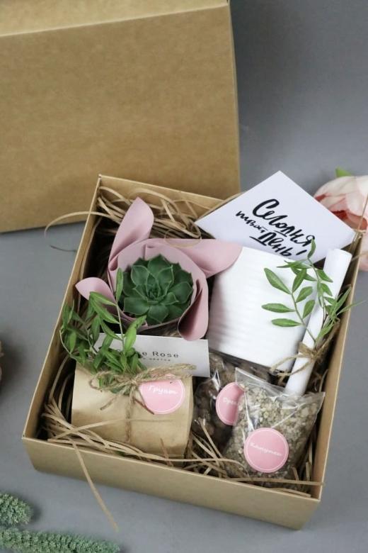 Подарочный набор Creative Succulens BOX №103
