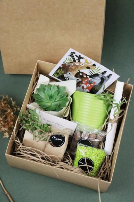 Подарочный набор Creative Succulens BOX №27