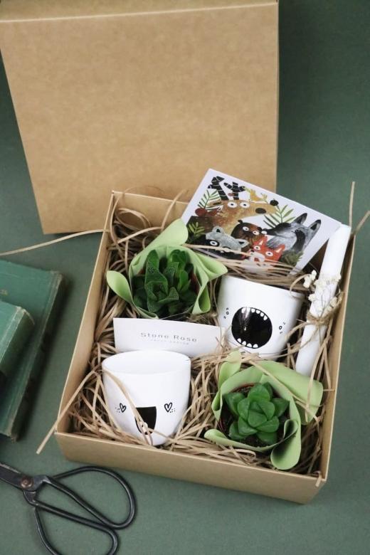 Подарочный набор Creative Succulens BOX №19