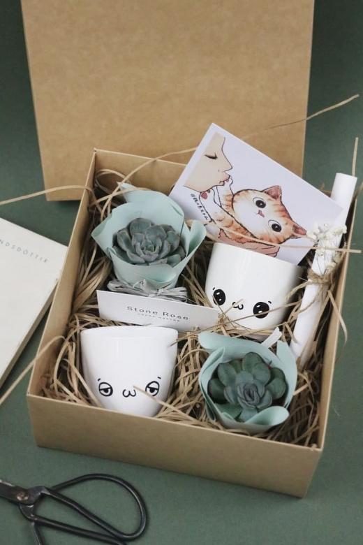 Подарочный набор Creative Succulens BOX №41
