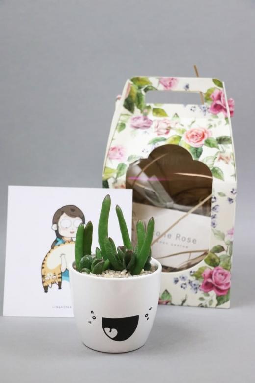 Подарочный набор Creative Succulens BOX №141