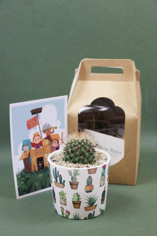 Подарочный набор Creative Succulens BOX №8