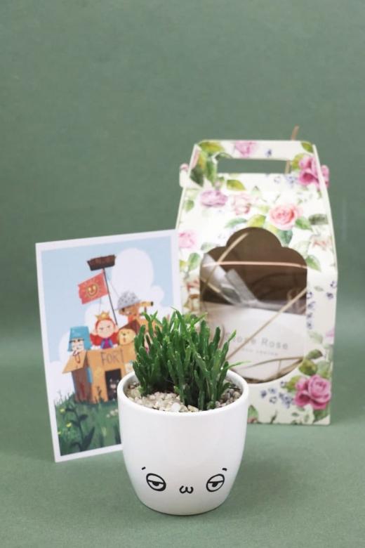 Подарочный набор Creative Succulens BOX №151