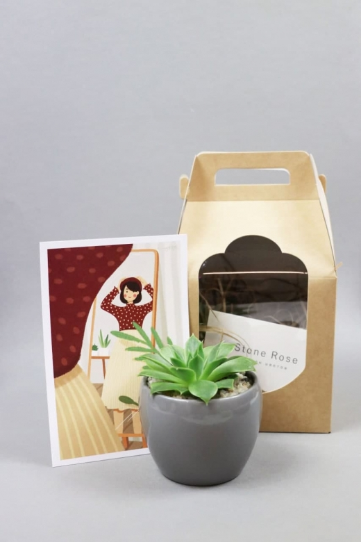 Подарочный набор Creative Succulens BOX №4