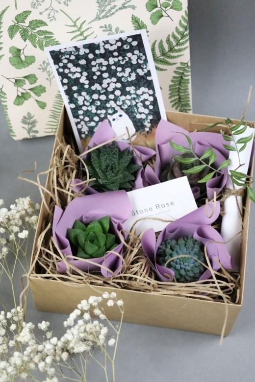 Подарочный набор Creative Succulens BOX №134