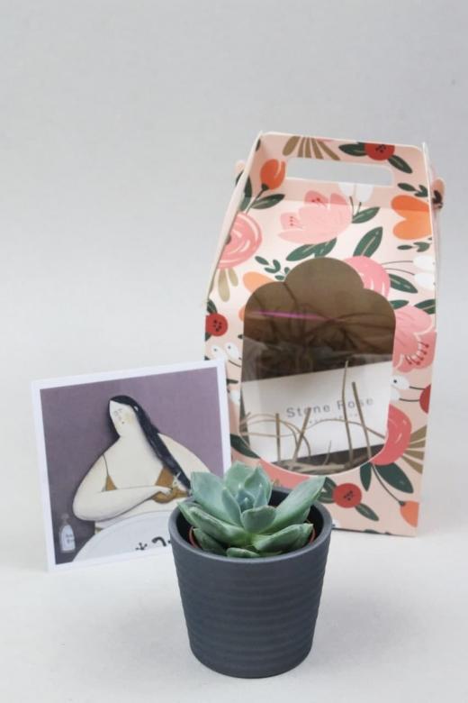 Подарочный набор Creative Succulens BOX №125